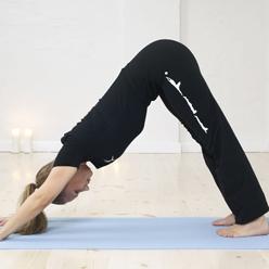 Yogaundervisning - hundestrækket