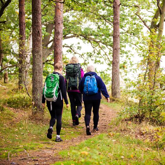 Yogaretreat Danmark- vandretur
