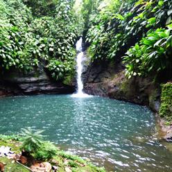 Guadeloupe-Gorge-Moustique